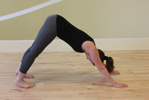 dynamic surya namaskar sequence  yoga mama  ashtanga yoga